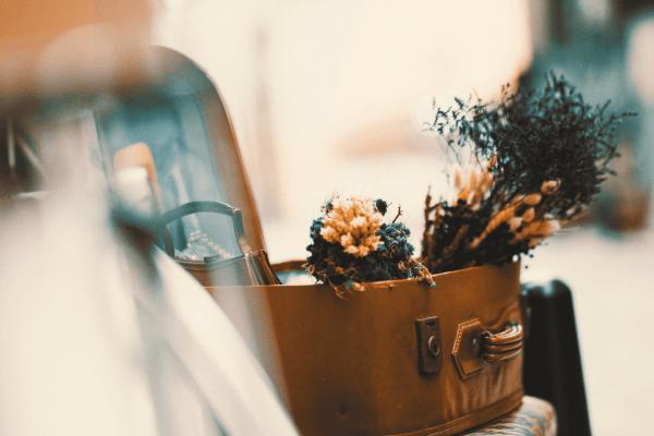 Fleurs séchées - Homki